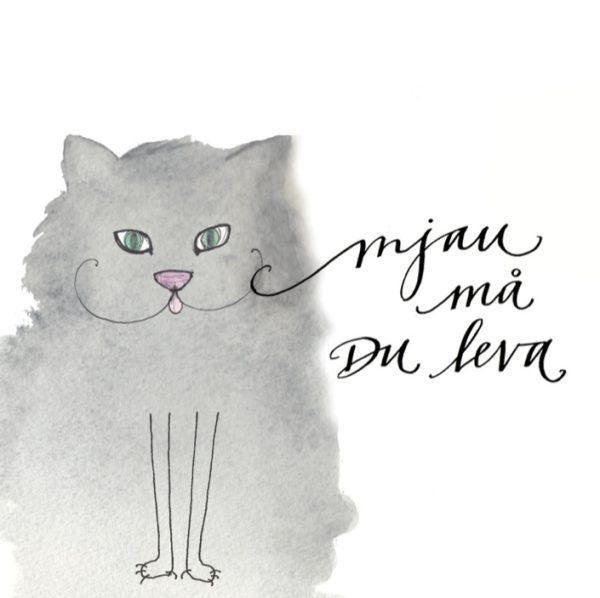 Grattiskort till katt